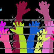 Človeške roke, bodeča žica. Vir: Pixabay